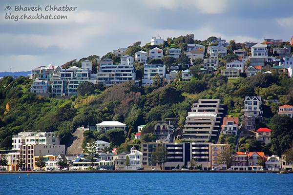 Oriental Bay neighbourhood as seen from Frank Kitts Park at Wellington [New Zealand]