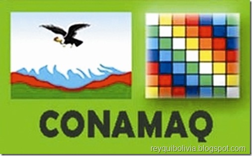 Organizaciones bolivianas