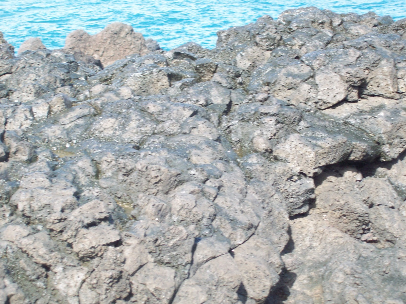 Hawaii Day 5 - 114_1531.JPG