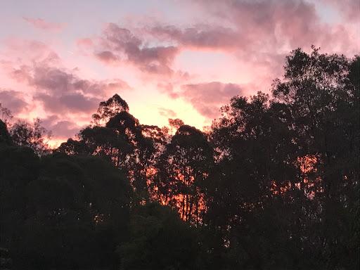 sunset-colours-2017-02-20-07-48.JPG