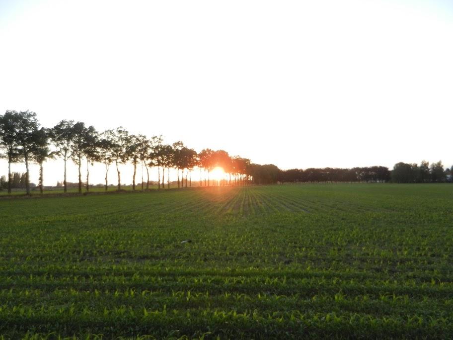 """100 Km """"Nuit des Flandres"""" (Torhout, B): 21-22/6/2013 Torhout%252C%25202223-06-12%2520065"""
