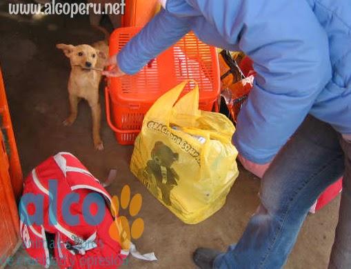 2da asistencia a Pisco por terremoto 2007 (26)