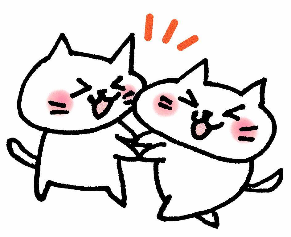 猫の遊び相手