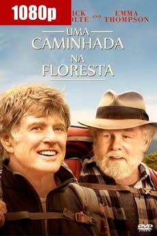 Baixar Filme Uma Caminhada na Floresta (2015) Dublado Torrent Grátis