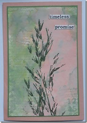 PROMISE REDONE
