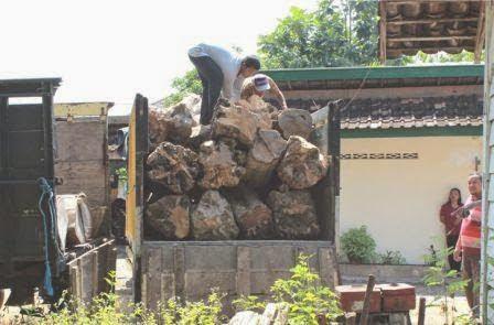 kronologi penggerebekan kayu jati glondongan di wilayah kecamatan pitu Ngawi