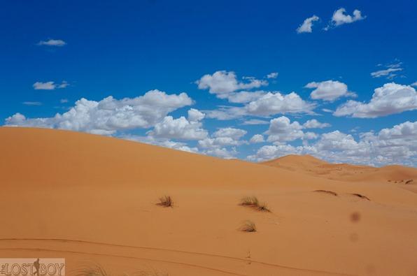 sahara desert-11