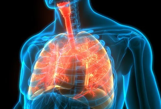 cystic fibrosis in chest area