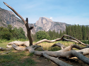 Yosemite National Park • July, 2002