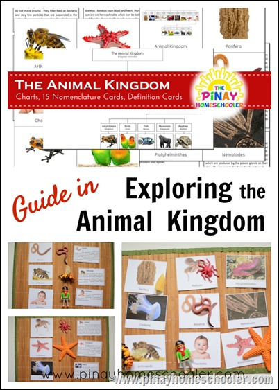 AnimalKingdomPIN