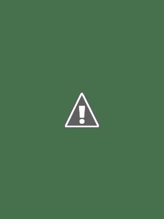 V-Neck A-line Spring Natural Fall Tea-Length All Sizes Zipper-up Dress (12764613)
