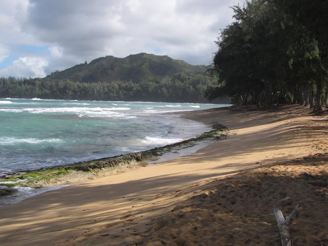 2012 - IMG_9397_Kepuhi_Beach.JPG