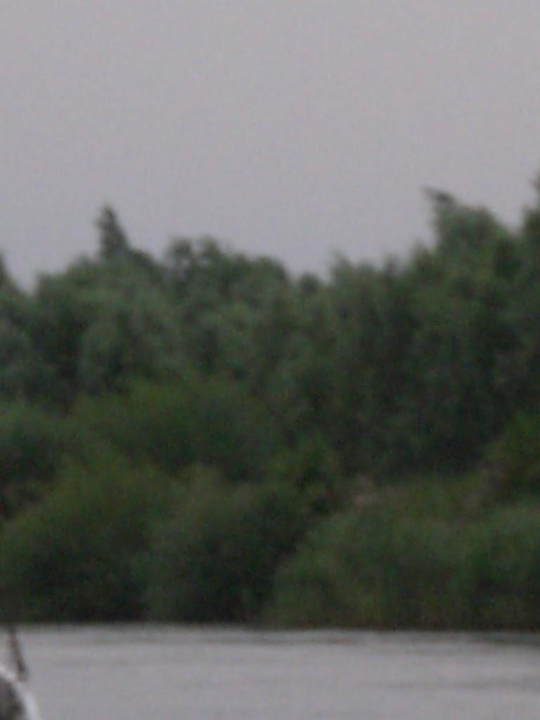 Zomerkamp Wilde Vaart 2008 - Friesland - CIMG0708.JPG