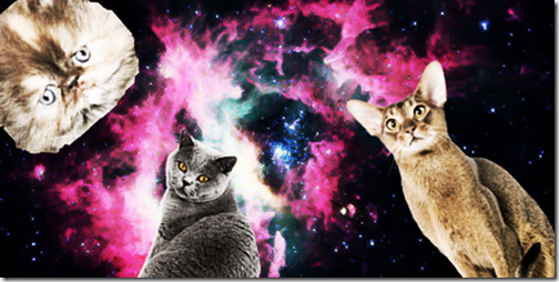 gatos galacticos  (1)