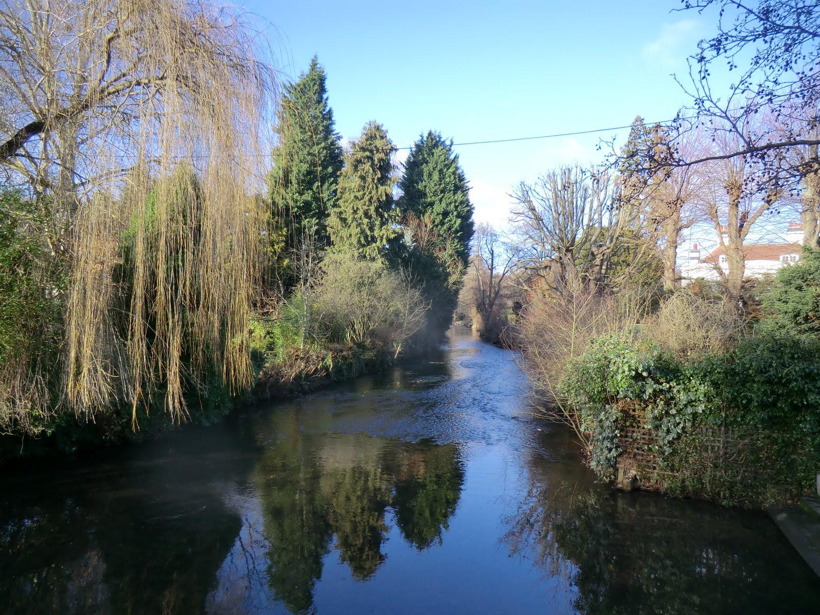 CIMG8077 River Darent from Shoreham Bridge