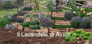 Progetti giardini online gratis progetti giardini privati for Architetti on line gratis