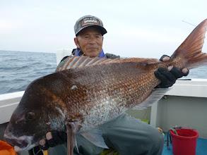 """Photo: 最後の最後に""""イノウエさん"""" 今年1番の真鯛キャッチ! 84cm、7.5kgでした! ・・・サメに喰われなくてよかったー!"""