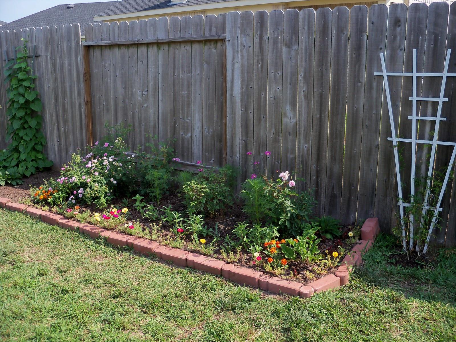 Gardening 2010, Part Two - 101_1858.JPG