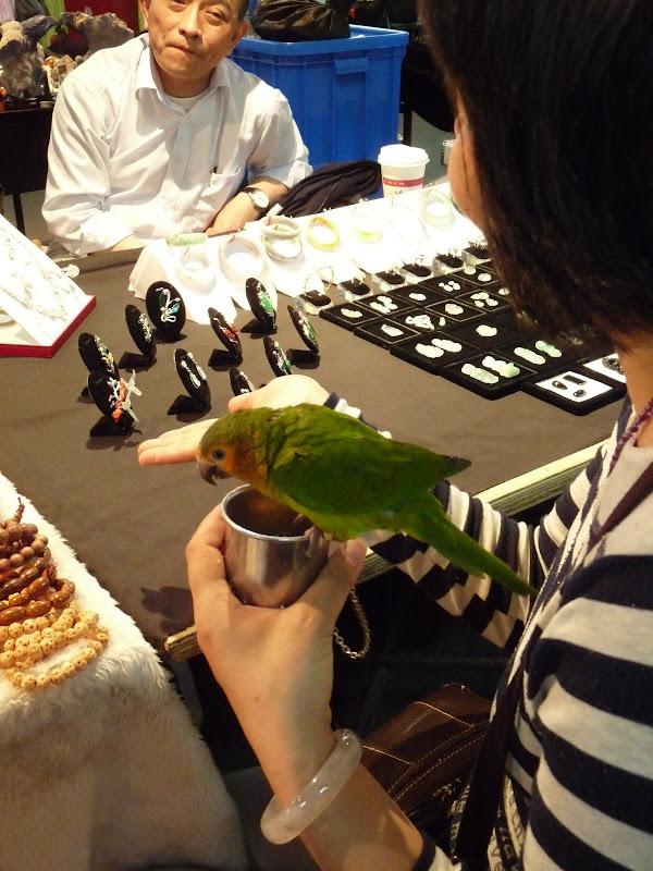 TAIWAN. Taipei Jade Market - P1160171.JPG
