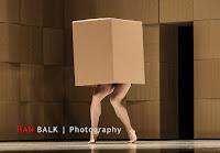Han Balk Wonderland-6727.jpg