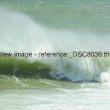 _DSC8036.thumb.jpg