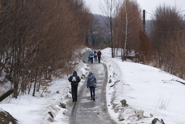 Zajęcia terenowe 29 lutego 2012 - DSC06175_1.JPG