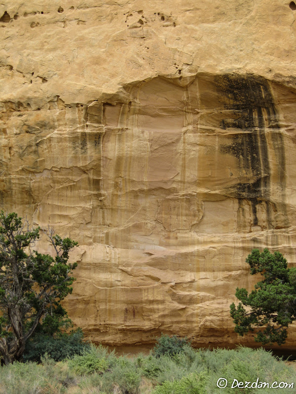 As you near the cliff face, the first pictograph panel starts to come into view.