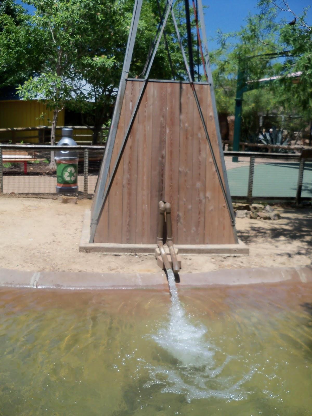 Houston Zoo - 116_8538.JPG