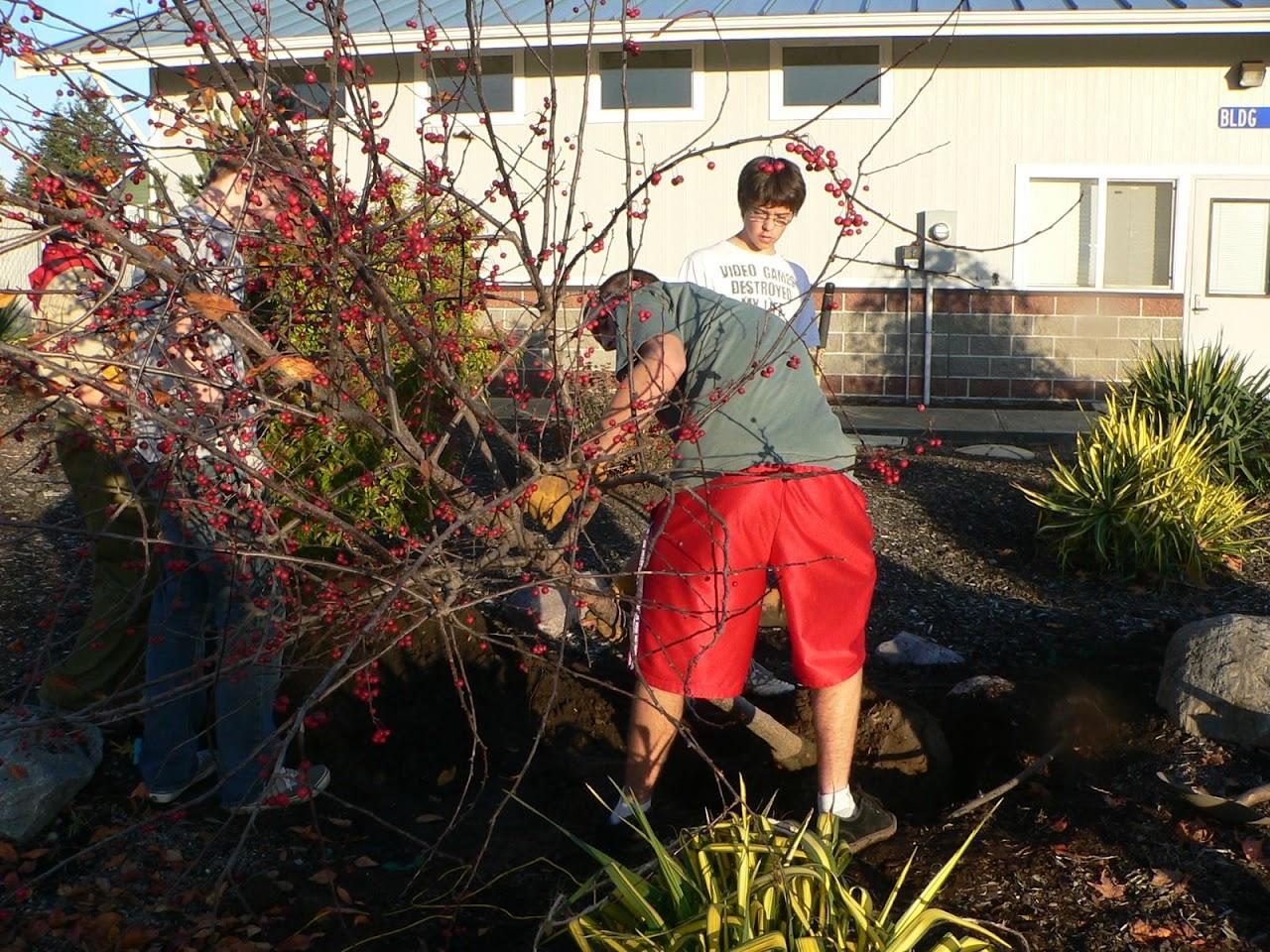 Tree Planting November 2010 - 110410 021.JPG