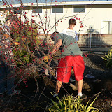 Tree Planting November 2010 - 110410%2B021.JPG