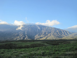 The backside of Haleakalā. The top of that volanco is 10,000ft!