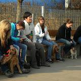 Kleinhundegruppe Mittwoch 17.30 Uhr - DSC_0038.JPG