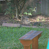 Gardening 2015 - 100_1282.JPG