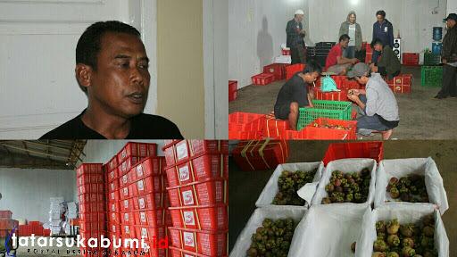 Manggis Sukabumi Nomor Satu di Dunia