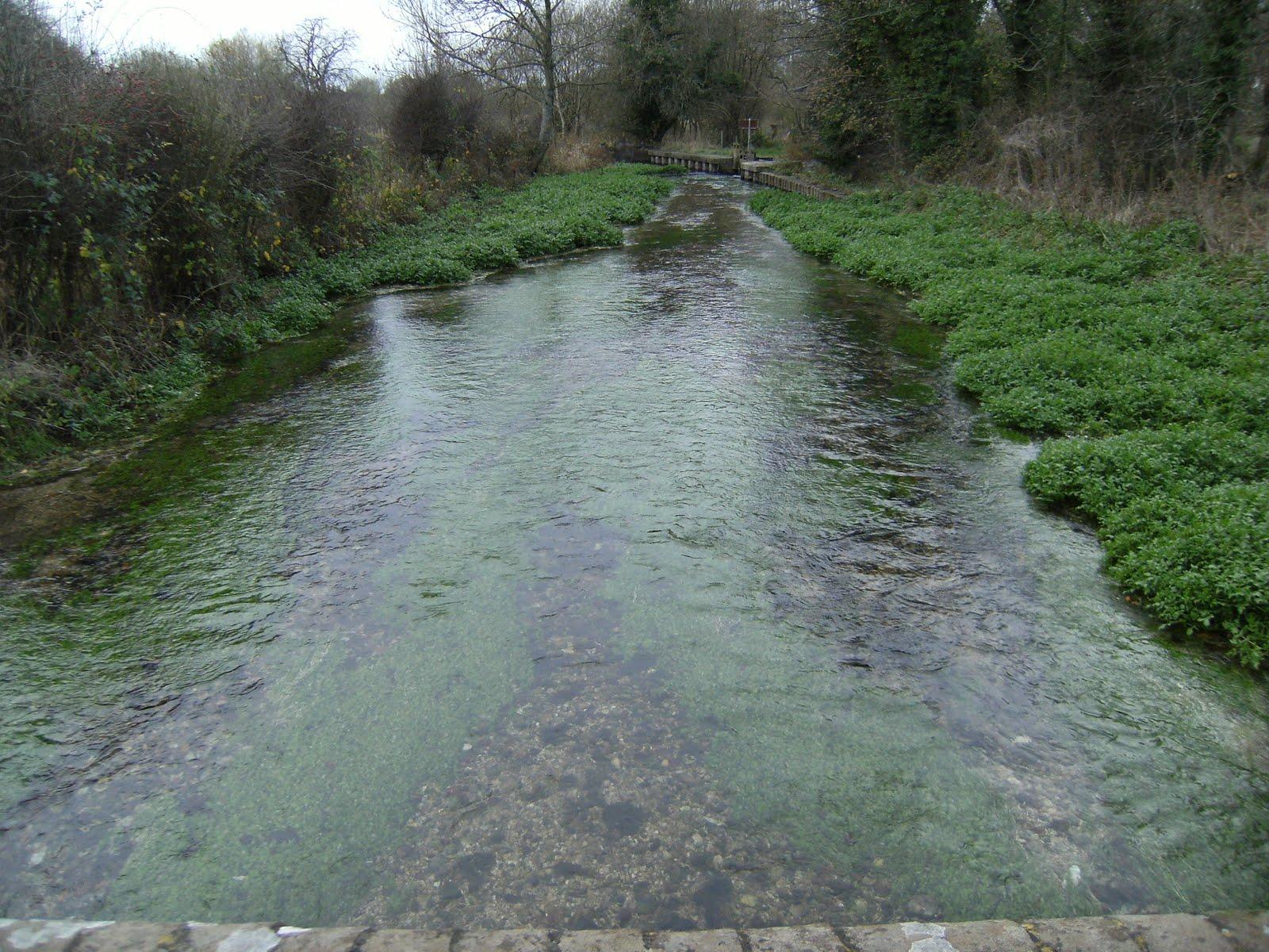 DSCF2709 River Test at Freefolk