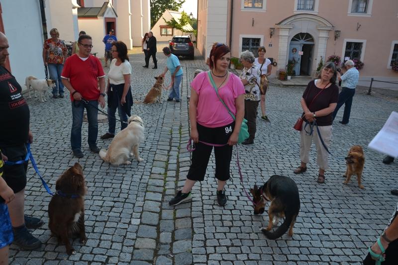 On Tour in Tirschenreuth: 30. Juni 2015 - DSC_0063.JPG