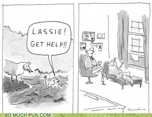 a cartoon of a Timmy telling Lassie to get help and Lassie is on a couch