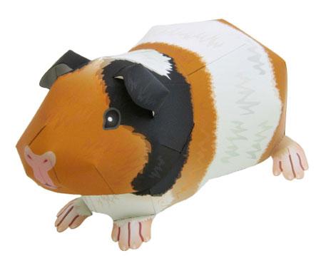 Guinea Pig Papercraft