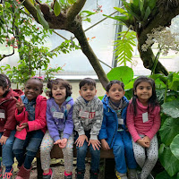 PK-A Butterfly Center Field Trip (2018-19)