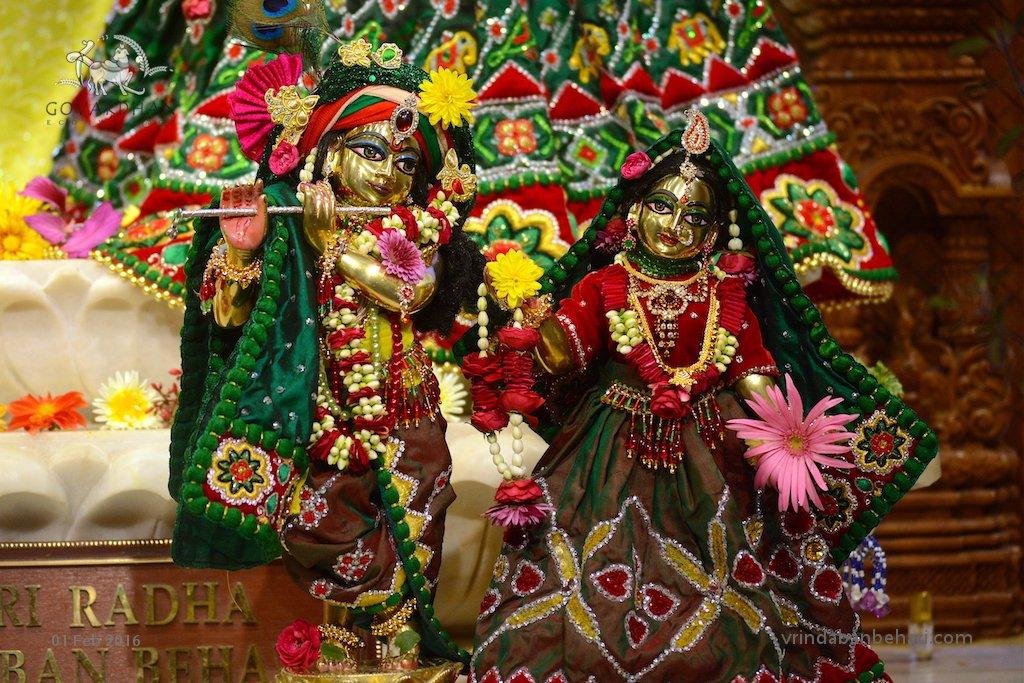 ISKCON GEV (Wada) Deity Darshan 01 Feb 2016  (2)