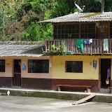 Las Juntas, 1300 m (Carchi, Équateur), 4 décembre 2013. Photo : J.-M. Gayman