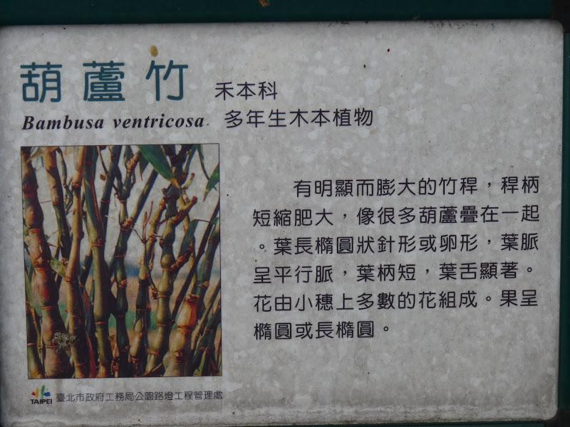 TAIWAN . TAIPEI,un dimanche après midi - P1160657.JPG