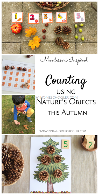 Fall Counting Activities Using Nature's Objects