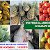XVII Feira da Agricultura Familiar será realizada nesta sexta-feira dia 08 de Novembro em Igarapé Grande