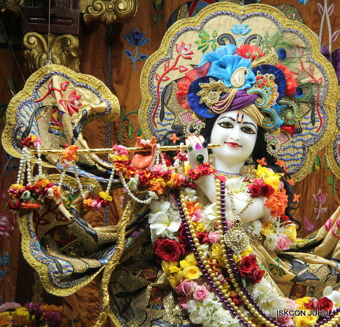 ISKCON Juhu Sringar Deity Darshan on 5th Sep 2016 (8)