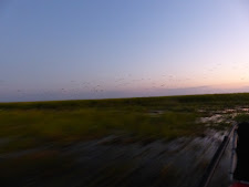Going really faast on an airboat!! Carmor Plains, NT