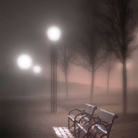 Benches in Fog by Marie Browning - City,  Street & Park  Night ( eerie, fog,  )