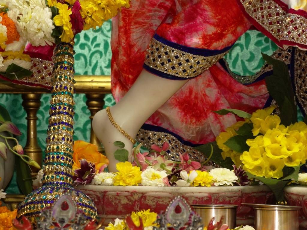 ISKCON Punjabi Bagh Deity Darshan 08 April 2016 (10)