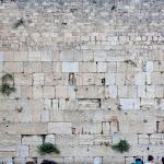 20180504_Israel_159.jpg