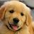 Ben Jakes avatar image